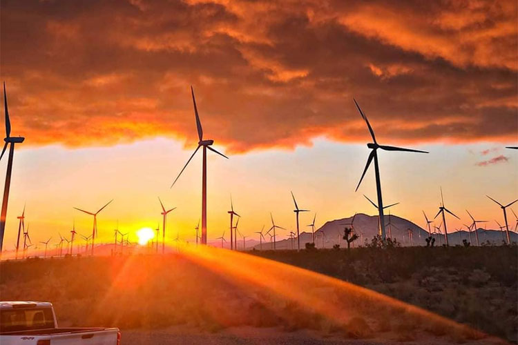 The Benefits of Using Renewable Energy in Your Home